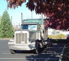 Peterbilt Tractor, Truck