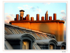 Toit de Paris (LeFon) Tags: travel roof paris france color canon bravo europe photographer gutentag