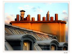Toit de Paris (Renald Bourque) Tags: travel roof paris france color canon bravo europe photographer gutentag
