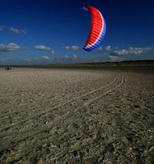 FLYING DUTCHMAN (ESOX LUCIUS) Tags: holland beach sea dunes naturereservedekwadehoek taco ouddorp