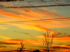 (Lanna Grace) Tags: sunset sc color blue pink purple red yellow orange breathtaking divine life worth appreciation powerlines trees south carolina clouds dusk top20nature