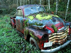 '48 Chevy (Compassionate) Tags: chevy chevrolet old rusty truck rusted womenonly interestingness wow 100v10f topf25 washington country topv111 1948 moss red blue green 500v50f topv333 topv555 topv666 forsakenthings topv777 1111v11f fv5