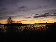 night falls (RR) Tags: winter sunset sea orange black color nature night clouds finland catchycolors island coast interestingness helsinki explore 500 200v seurasaari top500 nov292005