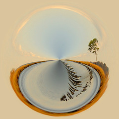 marsh scene in a clam shell (wortenoggle) Tags: marsh eastern shore photoshop