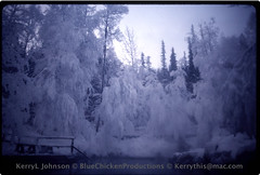 Laird Hot Springs,  Hoarfrost?