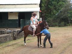 Horse Riding @ Maritim Hotel, Mauritius