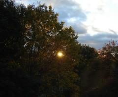 fall sun 2005 (l . e . o) Tags: maine bowdoin sky trees