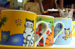 Caflin/Coffeline (Larazoni) Tags: larazoni tasses cups pipoca cats kittens pets furryfriday cafe coffee catwomen wonder