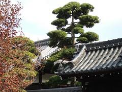 Chokodo temple
