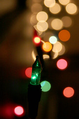 Champagne! (gwen) Tags: christmas pink winter light red white cold green 20d yellow gold dof bokeh christmaslight