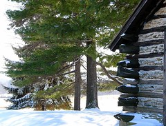 Cabin in the snow (jimall) Tags: winter shadow copyright sun snow pine log cabin copyrighted