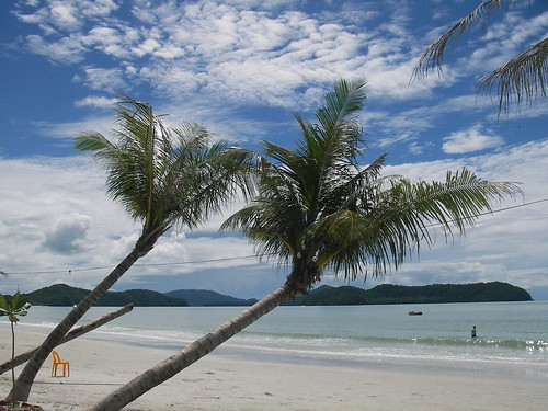 Langkawi beach, palms