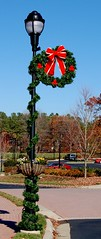 Merry Christmas! (Suzie T) Tags: christmas garden parking lot northcarolina raleigh wreath lightpole wral