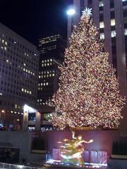 Christmas Tree at the Rockefeller Center
