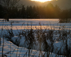 . (hn.) Tags: schnee winter sunset copyright snow nature backlight creek river germany season bayern deutschland bavaria heiconeumeyer europa europe sonnenuntergang nieve flus gaissach gaissacherfilzen gaisach gaisacherfilzen jahreszeit oberbayern seasonal upperbavaria meadow meadows eu bach fluss europeanunion contrejour gegenlicht copyrighted