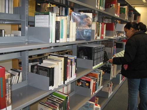 Centro Bibliotecario de El Bronx