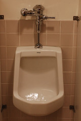 Flush! (Josh Thompson) Tags: freeassociation d50 bathroom urinal 50mmf18d nikoncapture