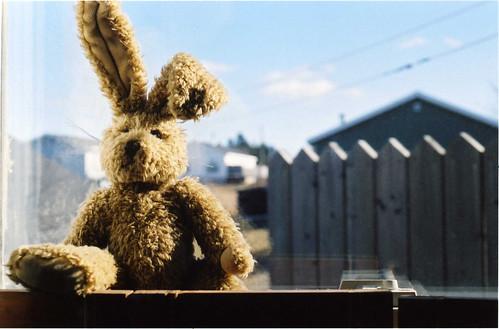 zajíček plyšový teddy hnědý