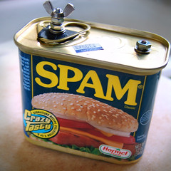 SPAMera ([ CK ]) Tags: camera classic film topf25 mediumformat interestingness topf50 handmade spam toycamera experiment pinhole 120film pork homemade p