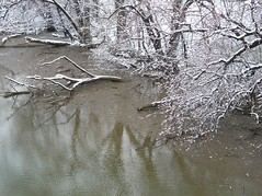 Winter Reflection I (*maria*) Tags: winter snow reflections rivers