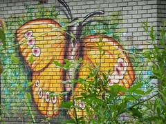 Taff Trail street art (DJLeekee) Tags: streetart wales butterfly graffiti peace unity cardiff enta tafftrailrivertaff