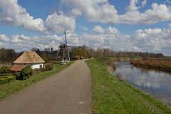 Waardenburg - Waalbandijk (grotevriendelijkereus) Tags: holland mill netherlands windmill town village nederland dijk dike molen dorp windmolen gelderland waardenburg