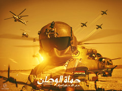 volca-iq designer - iraqi air fighters -    (volca_iq1) Tags: designer air fighters iraqi                       volcaiq