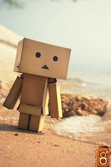 Danbo on the Beach (ElDave) Tags: macro toy toys actionfigure yotsuba danbo revoltech