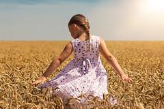 summer feeling (Thomas.Kastner) Tags: summer sun girl cornfield sommer feld kind feeling sonne mdchen kornfeld getreidefeld weizenfeld
