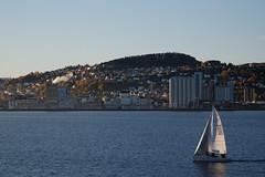 from Trondheim to Kristiansund #05 (S amo) Tags: norge norway norvège hurtigruten voilier boat bateau sailingboat trondheim mer sea water eau