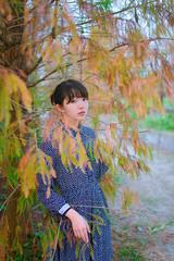 2017-01-12 (hiliang) Tags: hsuna 外拍 泰安 落羽松 taxodium distichum nikon d800 冬 2017 nai yue hsu