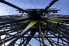 Ferris (evaxebra) Tags: disney disneyland california adventure theme park amusement