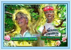 Sister Dorothy Stang we will remember you (Only time heals wounds) Tags: 19312005 livestockslongshadow sisterdorothystangmurder activisttoprotecttheamazongforestinbrazil brésil protectiondesforêtsviergesaubrésil meurtre 6bullets sister soeur religieuse livestock