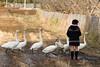 20170109-DS7_2218.jpg (d3_plus) Tags: d700 street 日常 70210mmf4 路上 望遠 景色 sky telephoto 風景 japan aiafnikkor70210mmf4s streetphoto dailyphoto nikon 鳥 70210mmf4af daily nikond700 路上写真 bird 70210mm 公園 garden 庭園 702104 scenery 70210mmf4s park ストリート 70210 thesedays 空 日本 tele ニコン nikkor