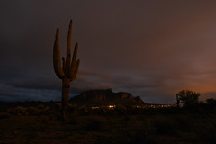sOLACE sOUGHT iN a sONORAN sTORM 46 (wNG555) Tags: 2017 apachejunction apachetrail superstitionmountain superstitionwilderness desert cactus nightscape storm clouds rokinon14mmf28 arizona phoenix