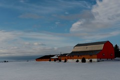 DSC_1752 (PaulPagéPhotos) Tags: barns country farms rural navan ontario winter snow