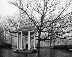Iconic (F. Neil S.) Tags: old well unc northcarolina columns domed roof oak tree fog mist drizzle bleak winter campus blackandwhite blancetnoir monochrome 120 roll film ultrafine100extreme mediumformat bronicaetrsi zenzanon ptlens