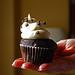 Cupcake in Charleston, SC