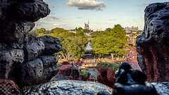 Splash Mountain View (tltichy) Tags: trees castle water boat ride florida top drop resort rollercoaster wdw waltdisneyworld themepark magickingdom frontierland plummet slashmountain may2015