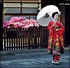 Maiko in May (cecia.chan) Tags: face japan tokyo asia makeup traditions maiko geisha   kimono kansai giappone geta      maikomakeup