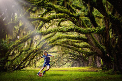 Fantasy Football Forest (Sidaho) Tags: trees girls england sports grass sport forest football woods soccer north womens fantasy end preston photocomposition lionesses wsl
