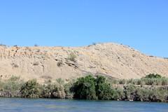 IMG_0192.jpg (DrPKHouse) Tags: arizona unitedstates loco bullhead ehrenberg chemehuevi