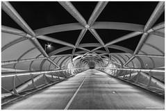 De Netkousbrug A15 (Rens Timmermans) Tags: canon5dmk3 sigma1224f4556dg blackwhite bruggen rijnmond rotterdam wegenwaterbouw niksilverefexpro nachtfotografie