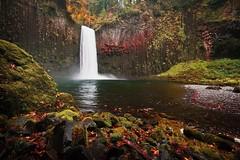 Abiqua  Falls, OR. (PaulCleaver) Tags: abiqua falls nikon