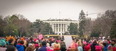 2017.01.21 Women's March Washington, DC USA 2 00154