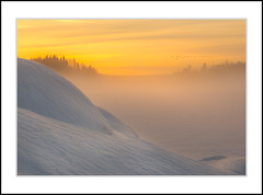 Swedish winter (andreassofus) Tags: winter wintertime snow mist misty fog foggy sunset sun sunlight landscape grandlandscape nature outdoor frozen frost cold freezing beautiful sky burningsky trees silhouettes canon sweden wow