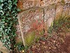 A Touch Of Red! (springblossom3) Tags: headstones gravestones church relic worship ancient wall nature berries cotswolds history churches religion architecture
