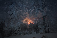 Fairy tale (Oksana_Oeri) Tags: winter landscape snow trees evening january tale nature outdoors canonefs1855 canon