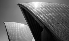 Opera House Abstract (Tracey Whitefoot) Tags: tracey whitefoot 2016 australia opera house nsw new south wales black white mono monochrome architecture close up light city icon iconic