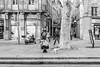 Mature woman with dog (x1klima) Tags: aixenprovence provencealpescôtedazur frankreich fr monochrome schwarzweis noiretblanc bw plain blackandwhite sonya7r ilce7r zeiss sonnarfe55mmf18za sonnartfe1855 woman women frau frauen femmes model models weiblichkeit busty leg legs ethnic exotic fashion mode nonnude mature streetphotography streets streetview candid urbanity urban emptiness einsamkeit pain schmerz leid qual qualen mühe aching ache grief
